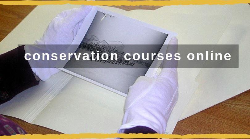 conservation courses online