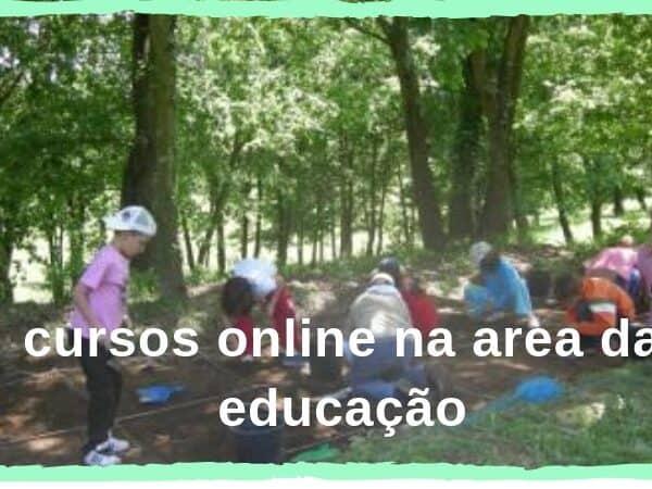 cursos online na area da educação