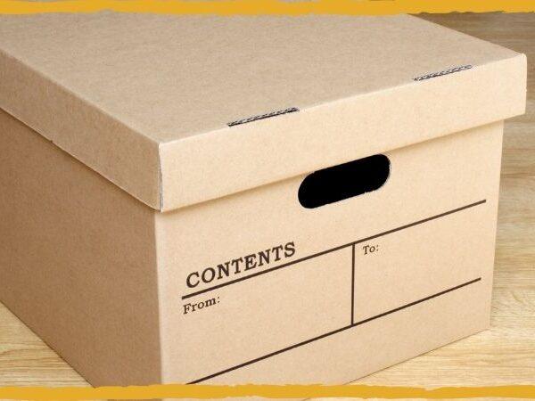 conservação preventiva de documentos