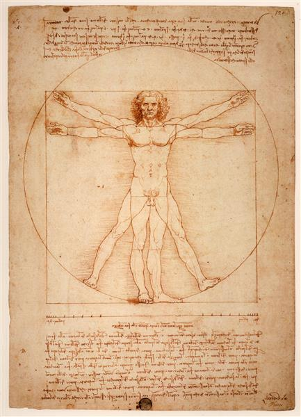 quem foi Leonardo da Vinci O Homem Vitruviano