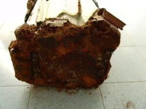patologias na madeira   conservação e restauro