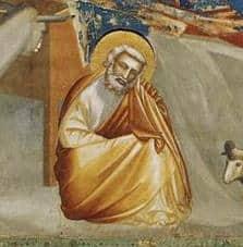 Natividade São José