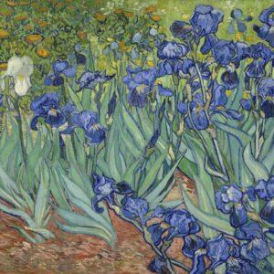 Van Gogh pós-impressionismo